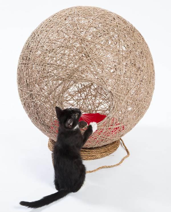 letti gatti