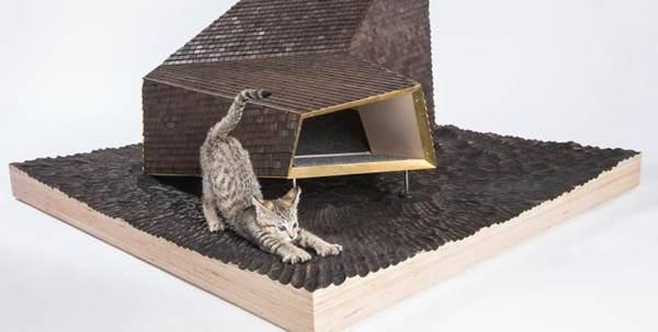 letti-gatti
