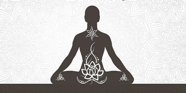 meditazione organi