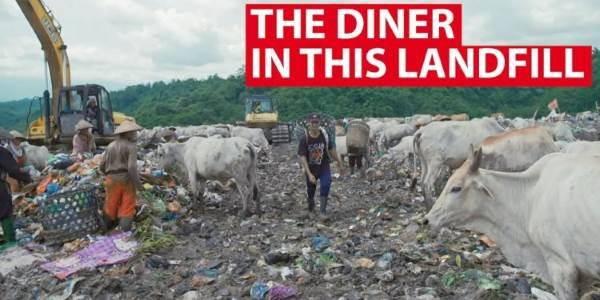 ristorante-discarica