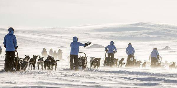 Viaggio nel circolo polare artico