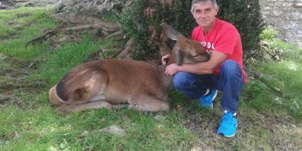aladino-e-bambi