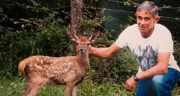 aladino e bambi1