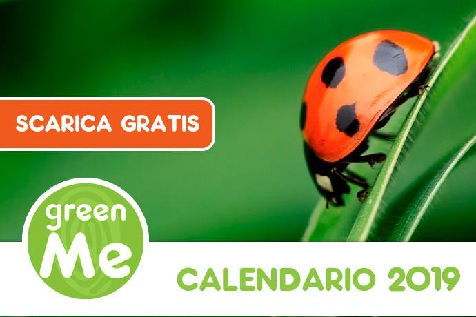 Calendario Digitale Per Anziani.Scarica Gratis Il Calendario Greenme 2019 Greenme It