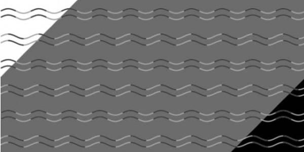 linee curve o zigzag