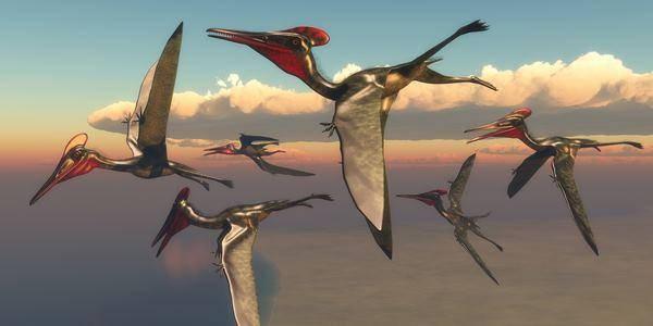 pterosauri