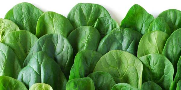 Green leaves vegetables