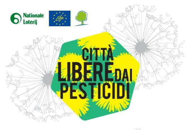 ciità pesticidi