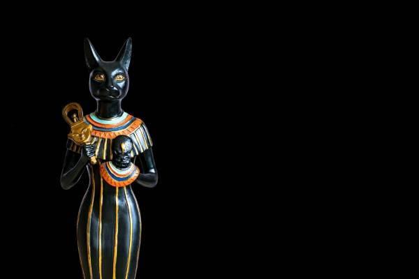 gatto nero superstizione4