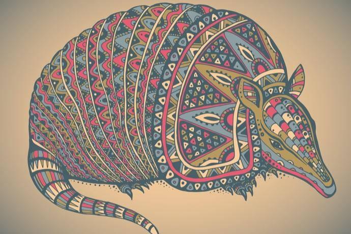 leggenda armadillo