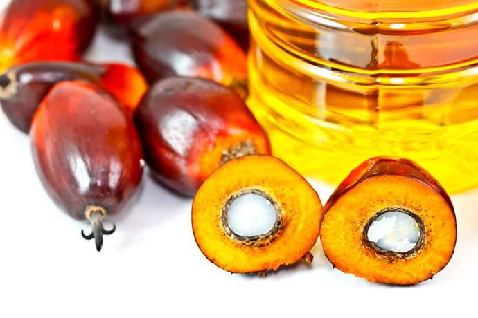 olio-palma-contaminanti