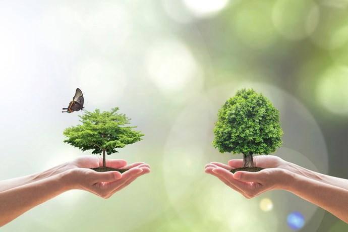 agenda ambientalista
