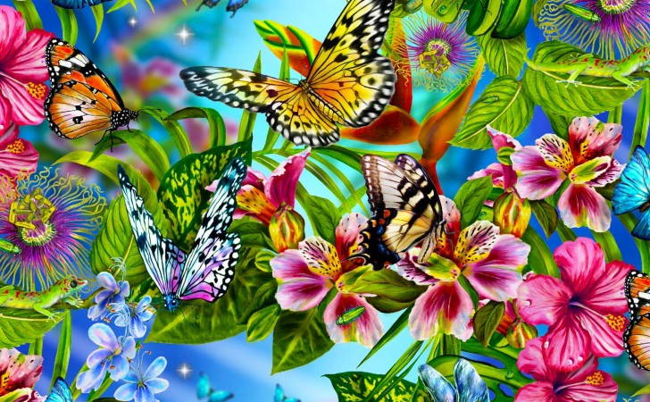 butterfly wallpaper high quality 728x450