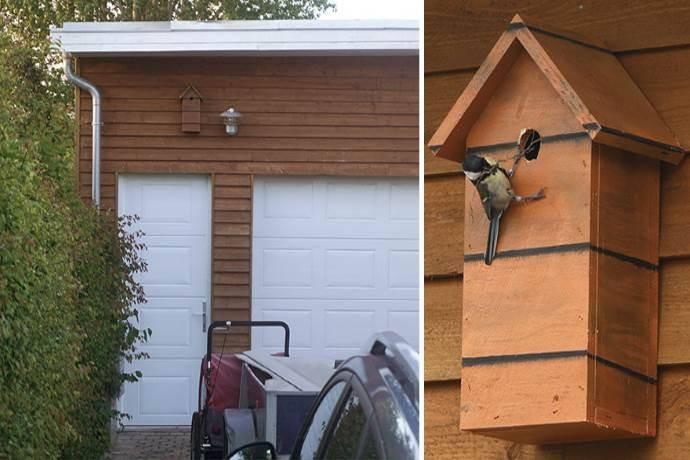 casa-uccelli-dambo