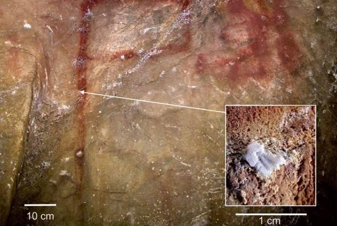 disegni-neanderthal