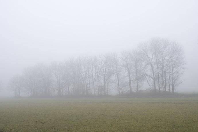 Nebbia Padania