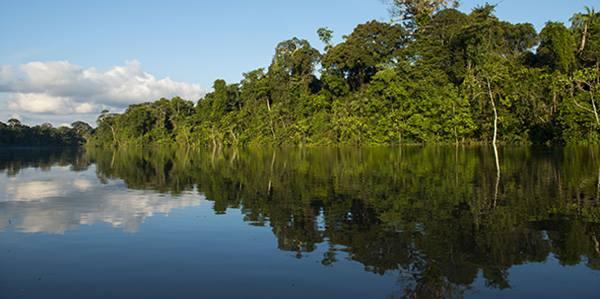 parque nacional yaguas3