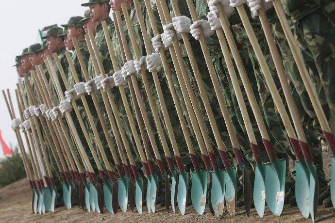 Soldati cinesi alberi
