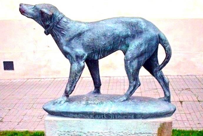 cane-fido-monumento