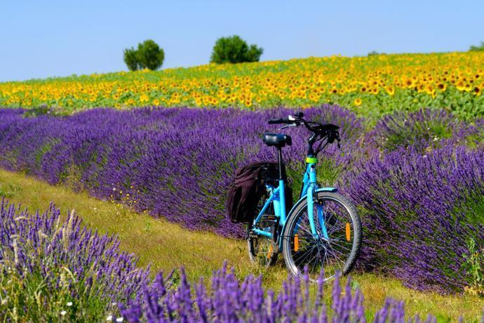 e-bike normativa
