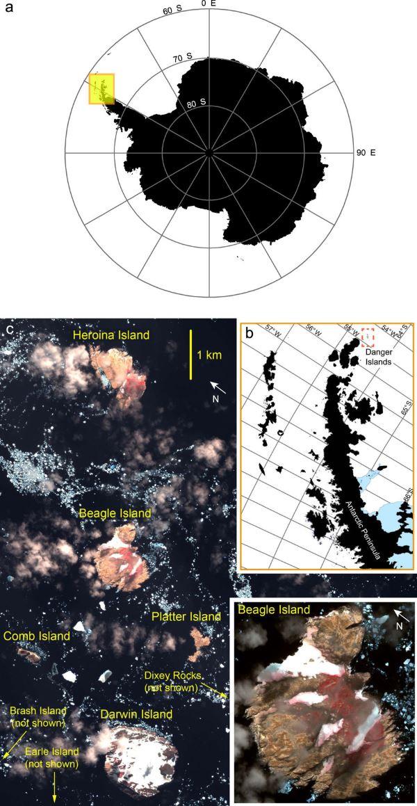 foto pinguini mappa