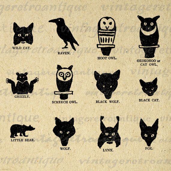 segni zodiacali americani