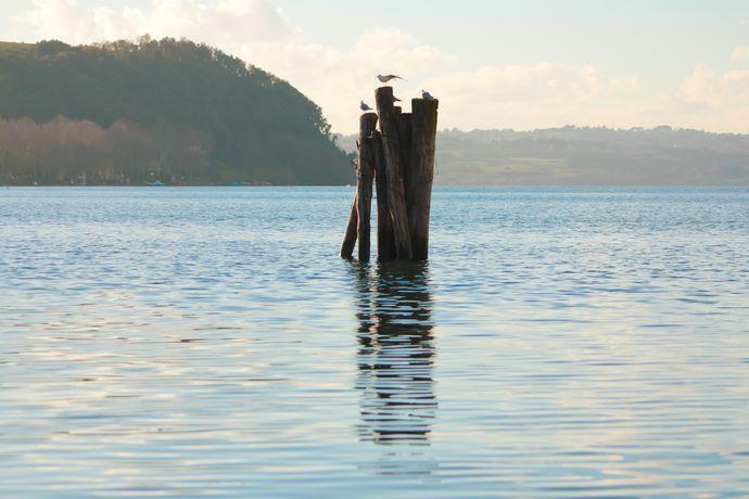lago bracciano emergenza ricorso acea 2018