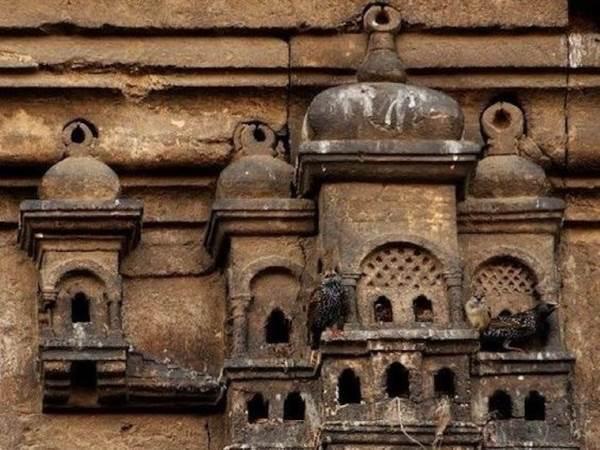 case uccelli turchia1