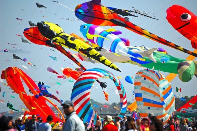 festival aquilone