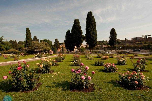 roseto comune roma 2