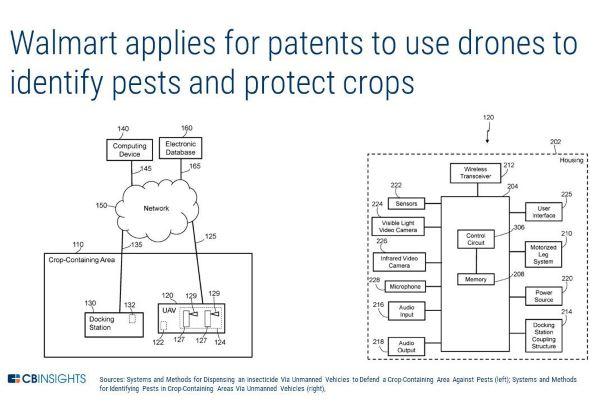 Walmart brevetta api robot per impollinare le colture - GreenMe it