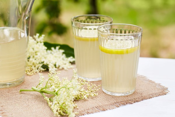 acqua fiori sambuco