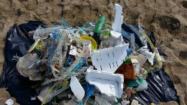 beach litter 2018 2