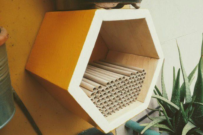 Apre il primo BeeHotel di Roma, l'albergo per api solitarie