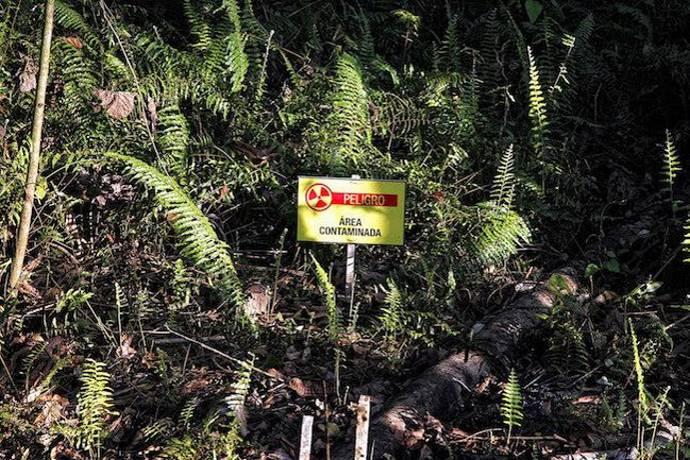 Chevron amazzonia