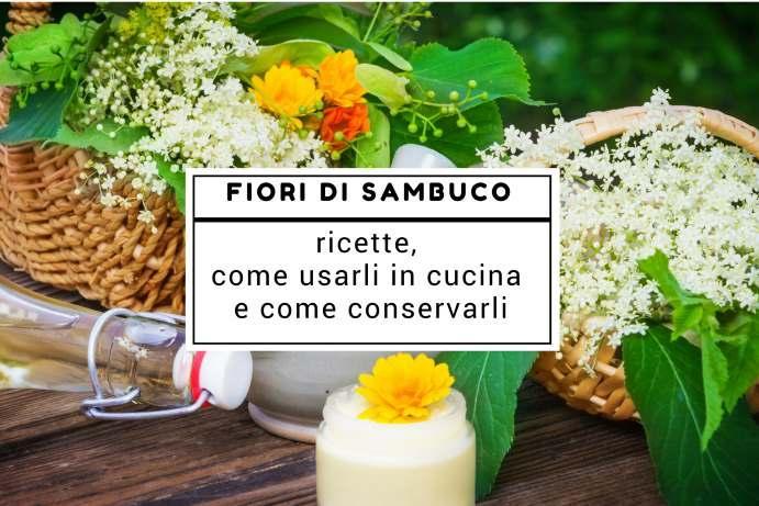 fiori sambuco ricette