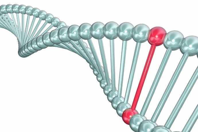 Longevità genetica