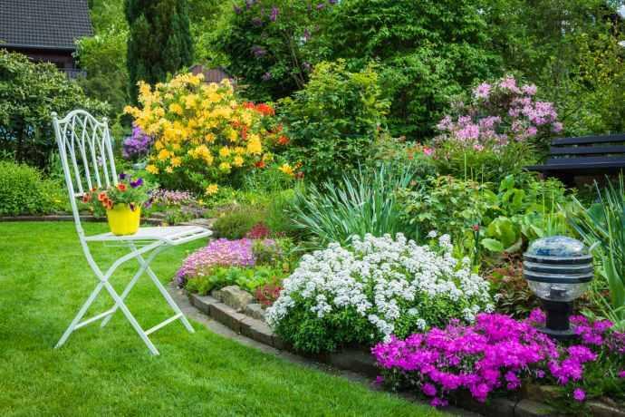 10 piante e fiori per attirare api e coccinelle in for Piante e fiori
