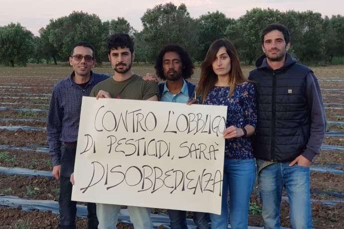 xylella-disobbedienza decreto pesticidi