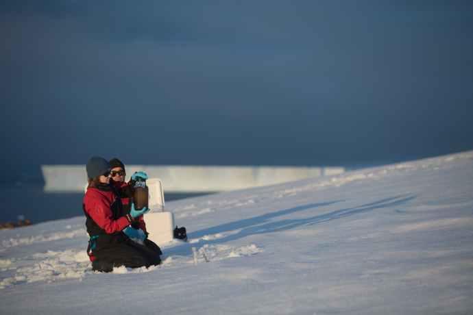 Antartide plastica