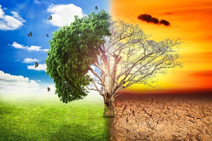 cambiamenti-climatici-razzismo