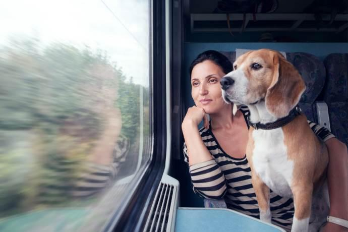 cani-gatti-viaggiare treno-promozioni