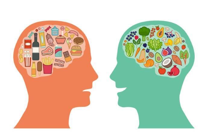 Cervello dieta