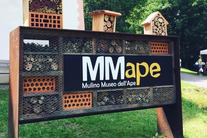 museo-api