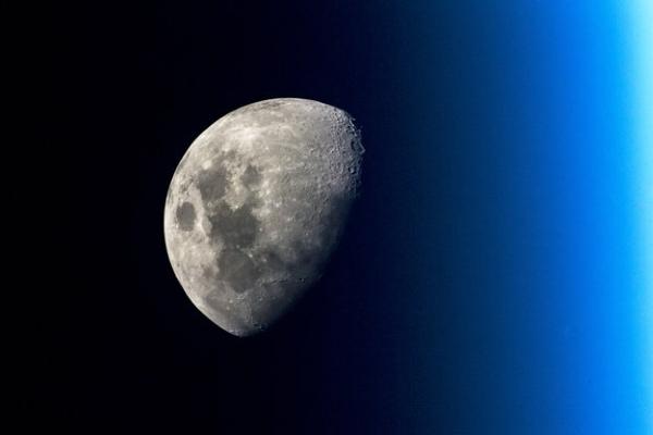 luna tossica