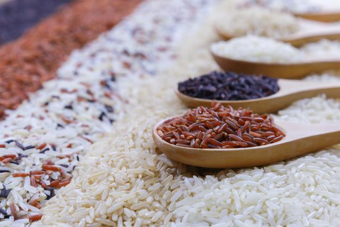riso biologico tracciabilita frodi