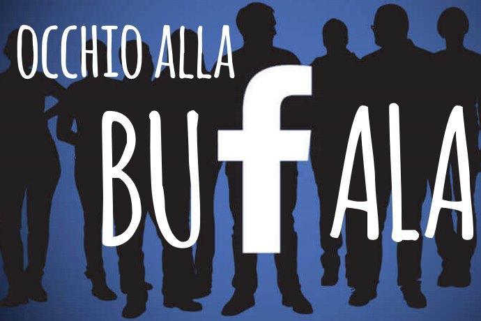 bufala facebook