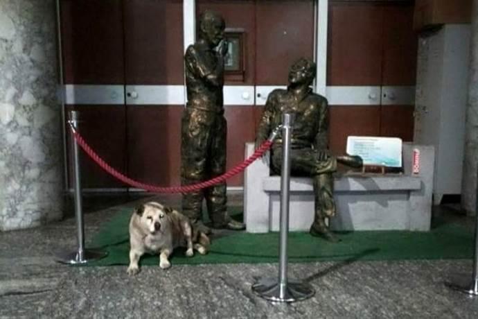 uccio cane statue falcone borsellino