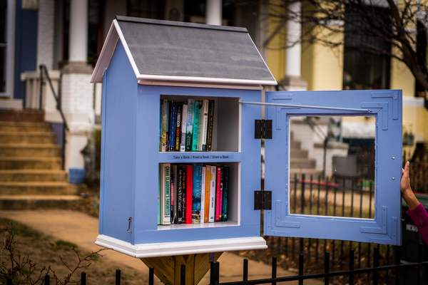 Little Free Libraries 10