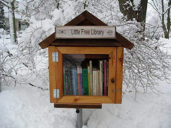 Little Free Libraries 9
